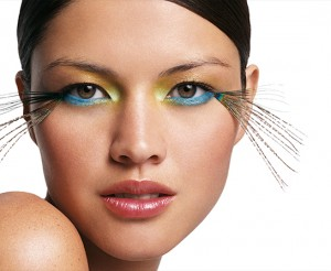 graphics-beauty-peacock2