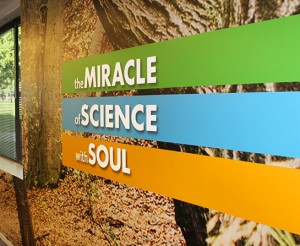Corporate-City-of-Hope-Duarte-California-Large-Format-Graphics-5